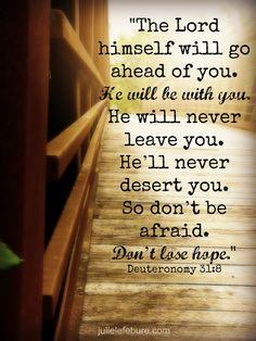 deut31-8